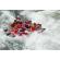 Customer Photo - 16' Saturn Whitewater Raft in Big Whitewater
