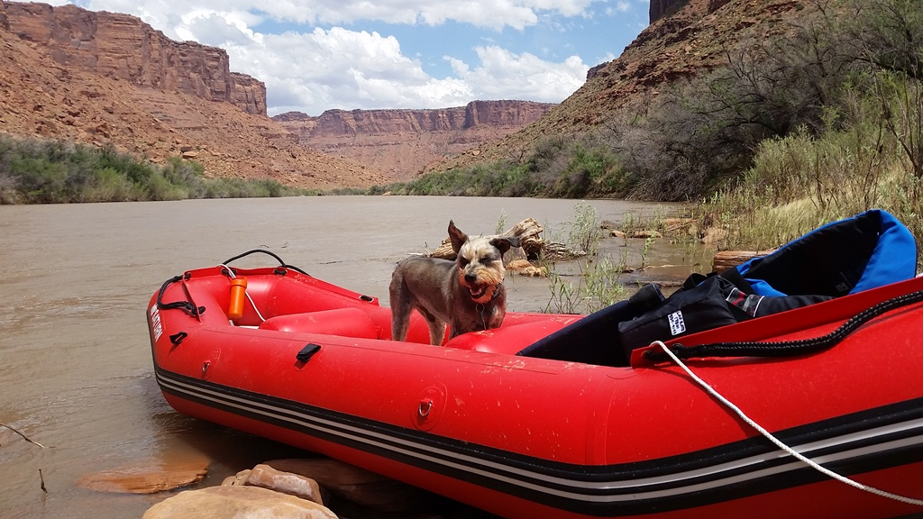 New 12' Saturn Raft/Kayak - RD365X RED - Customer Photo